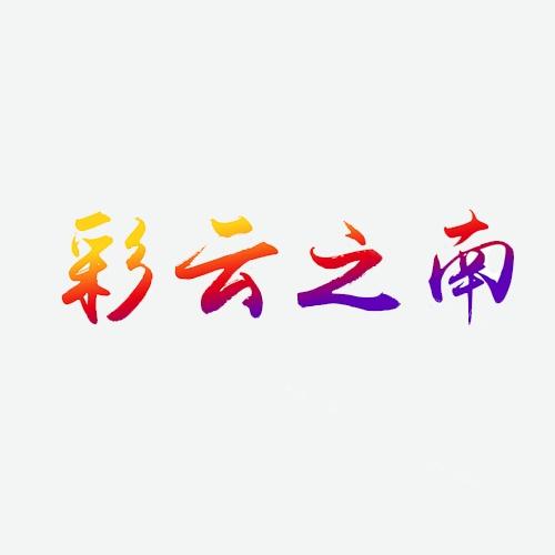 彩云之南瓦香雞米飯