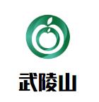 武陵山珍菌菇火鍋